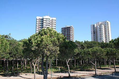 Apartments In Lignano Pineta